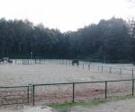 Paddocks auf den ehem. Tennisplätzen